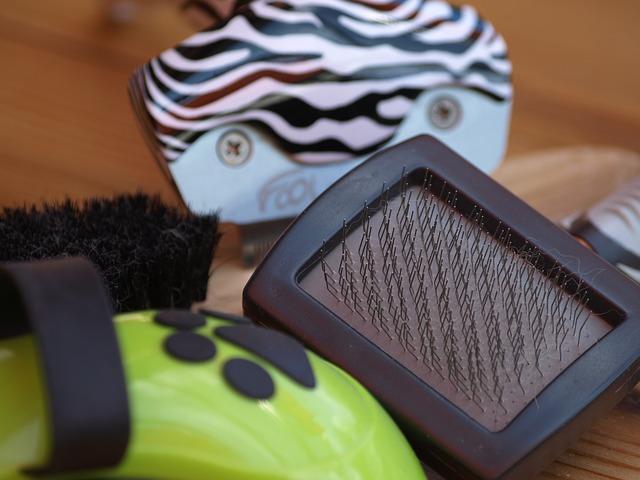 Die Hundebürste – Warum regelmäßige Fellpflege wichtig ist