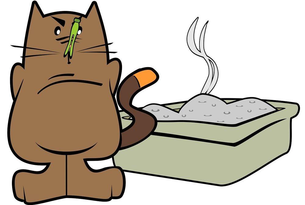 Der Katzenklo Schrank, eine saubere Sache